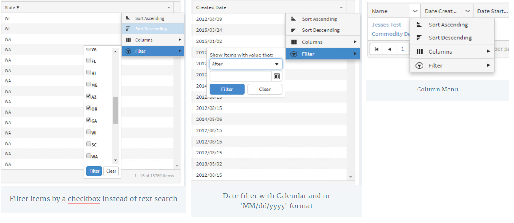 Kendo UI Grid and AngularJS: Formatting and Filtering JSON